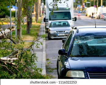 Car trapped under fallen tree after wind storm on June, 2018 in Tallinn city, Estonia. broken windshield. The concept of an emergency situation