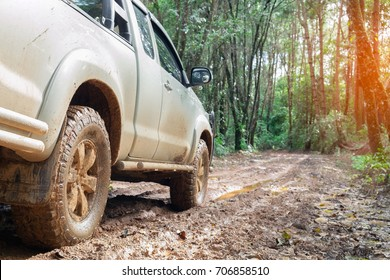 car wheels on a gravel road in tropical jungle