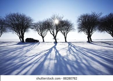 Car in winter landscape
