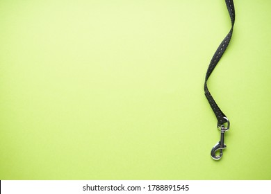 Carabiner with dog leash on green background with space for text. Top view.