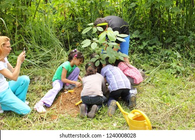 Caracas/Venezuela - April 22, 2018: Kids planting an Tabebuia chrysantha or Araguaney, National Tree of Venezuela an emblematic native species of extraordinary beauty during earth day celebration
