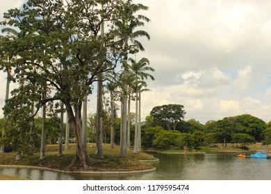 Caracas/Venezuela-January 07th, 2014: Boat Lake in the West Park, Parque del Este in Caracas, designed by famous Brazilian architect Roberto Burle Marx