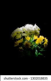 the Caravaggio flowers