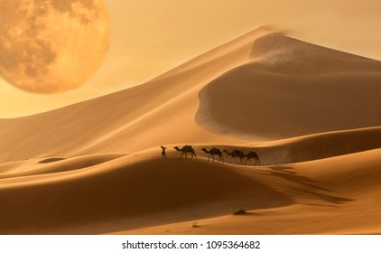 Caravan of camels in the Sahara desert during desert storm, Morocco. Fantastic scene in the picture.