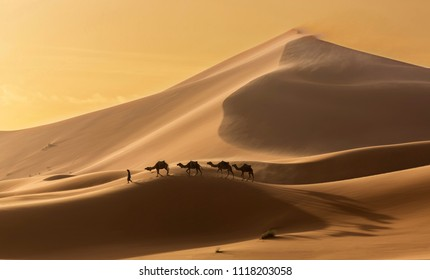 Caravan of camels in the Sahara desert during desert storm, Morocco