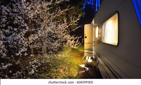 Caravan trailer on a forest road under a blooming tree in Spring