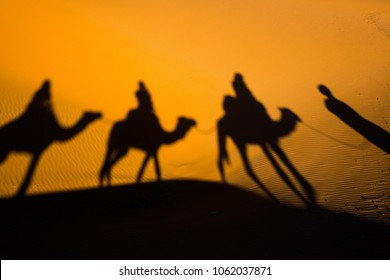 Caravan traveling and camels shadows on the sand in Sahara desert