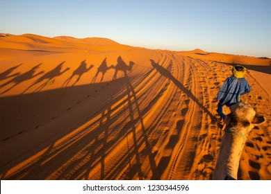 Caravan traveling and camels shadows on the sand in Sahara desert, Morocco.