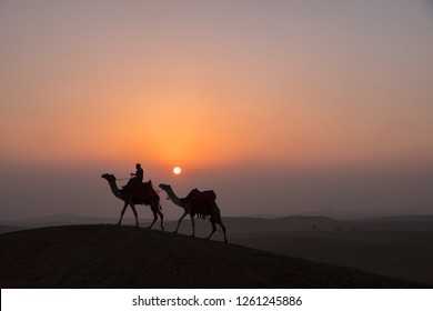Caravan of two camels walk trough desert at sunset