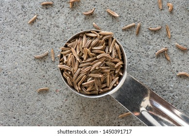 Caraway Seeds Spilled from a Teaspoon