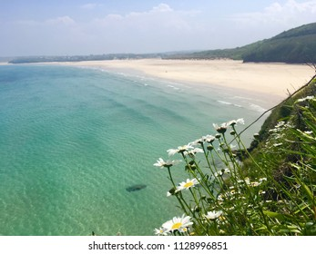 Carbis bay beach, Cornwall on a sunny day with daisies in foreground & tranquil azure sea looks tropical June 2018