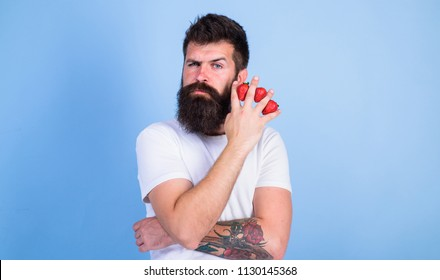 Carbohydrate content strawberry. Metabolic disease. Strawberries safest fruit for sugar levels. Mostly carbohydrates sucrose fructose glucose. Man beard hipster strawberries fingers blue background.