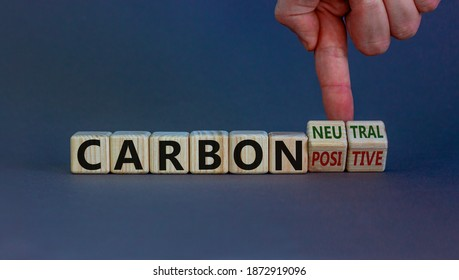 From carbon positive to neutral. Hand flips cubes and changes words 'carbon positive' to 'carbon neutral'. Beautiful white background, copy space. Business, ecological and carbon neutral concept.