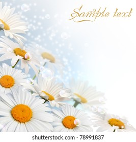 Card with daisy, bubbles and stars