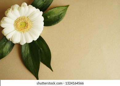 Card design, flower on gold background