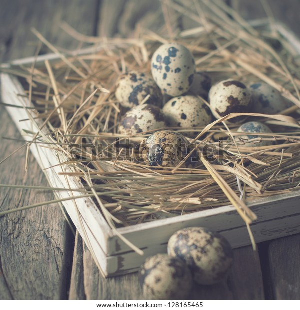 Card with Quail Eggs Easter on a Hay Pastel Colors