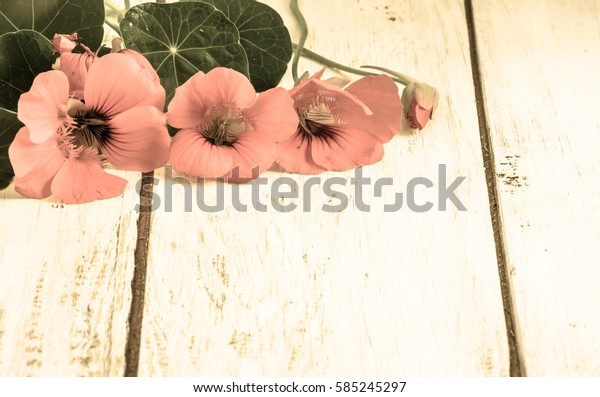 Card for women's day, background with flowers on rustic wooden background