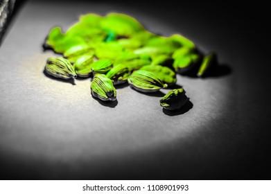 cardamom green black backgound