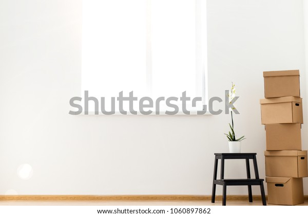 Cardboard boxes with a flower standing on a ladder stand in an empty room