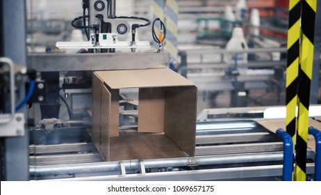 Cardboard package box packing machine. Clip. Box forming production line