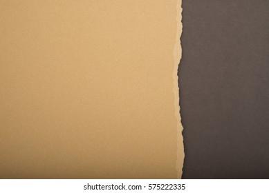 Cardboard texture ragged edge.