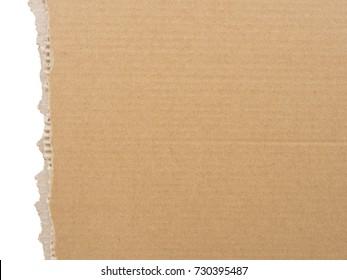 cardboard torn edge. cardboard background isolated on white