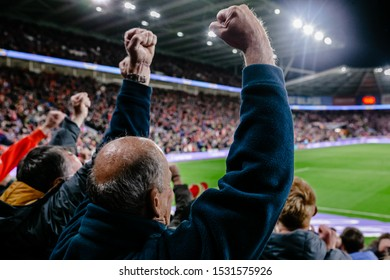 CARDIFF, WALES - OCTOBER 13: Welsh Fan celebrates the Gareth Bale goal during the UEFA Euro 2020 qualifier between Wales and Croatia at Cardiff City Stadium on October 13, 2019 in Cardiff, Wales.