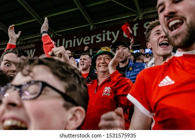 CARDIFF, WALES - OCTOBER 13: Welsh Fans celebrate the Gareth Bale goal UEFA Euro 2020 qualifier between Wales and Croatia at Cardiff City Stadium on October 13, 2019 in Cardiff, Wales.
