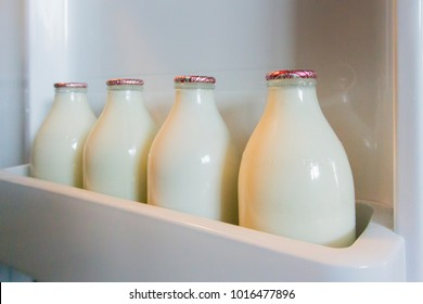 CARDIFF, WALES, UK, JANUARY 2015 - Four glass milk bottles in a fridge door shelf