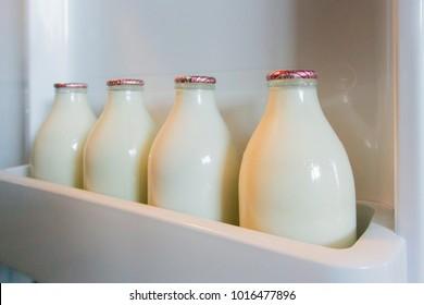 CARDIFF, WALES, UK, JANUARY 2015 - Four glass milk bottles in a fridge door shelf