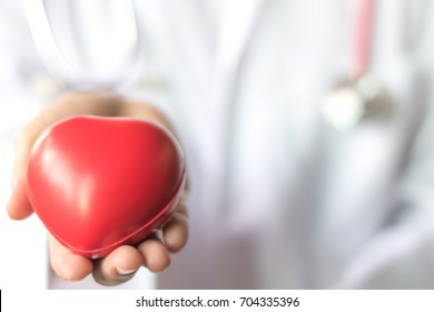 Cardiologist with cardio disease healthcare concept. Red heart in doctor physician hand.