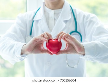 Cardiologist doctor holding red heart in clinic hospital exam room office for professional medical cardiology health care service, csr donation charity organ donor and world heart health day concept