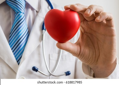 Cardiologist doctor holds red heart in hand.