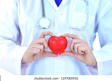 Cardiologist holding heart in hand, heart care concept