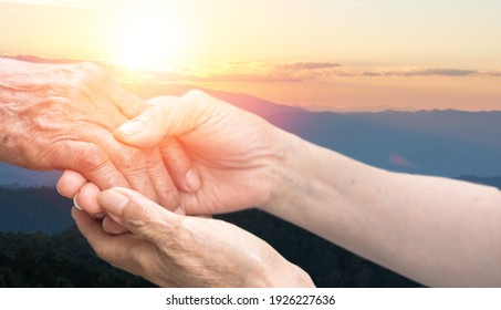 Caregiver, carer hand holding elder hand with blurred nature background. Euthanasia Philanthropy kindness to disabled old people concept. National Senior Citizens Day