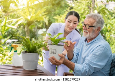 Caregiver help assist senior old man eldery puring water and taking care small tree on table