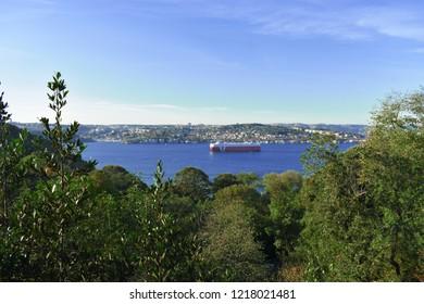 cargo boat passing through the Bosphorus Strait. Hidiv Kasrı, Beykoz, Turkey.