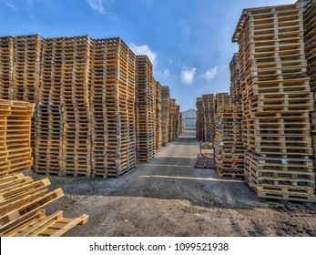 Cargo Business area with huge Piles of euro type cargo pallets ready for recycling