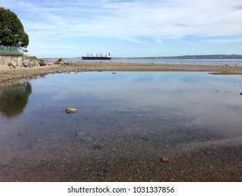 cargo ship at inlet next to beach reflections pond