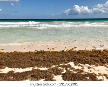 Caribbean beach in the city of Tulum in Mexico in winter
