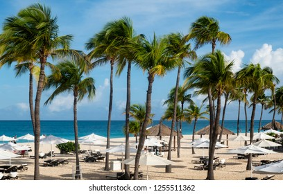 Caribbean Beachfront with Sun Umbrellas, Gazebos and Swaying Palm Trees