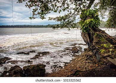 Caribbean Coast with Stormy Ocean Water. Tropical Forest Ocean Shore. No People. (Cahuita, Costa Rica).