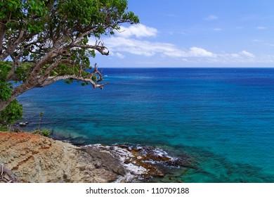 Caribbean Coastline - Antigua