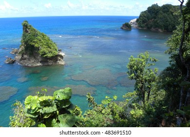 Caribbean exotic view to the Atlantic ocean with reefs and rocks in the Dominica, Caribbean