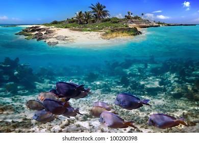 Caribbean island with perfect lagoon