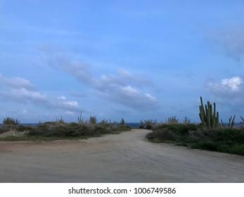 Caribbean landscape. The arid nature of Aruba.
