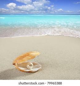 Caribbean pearl inside clam shell over white sand beach [Photo Illustration]
