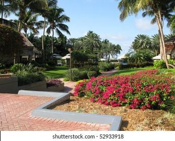 Caribbean Resort Hotel View