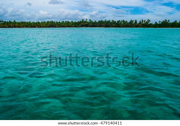 Caribbean Sea and coastline with palm trees in the distance