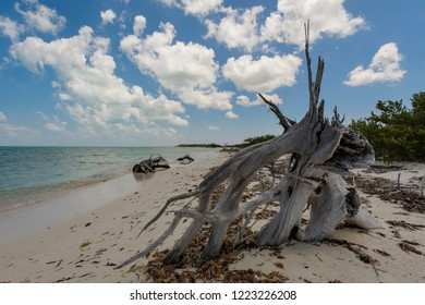 Caribbean sea in Mexico with shallow water and clouds